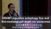 秦正红:DRAM1 regulates autophagy flux and Bid-mediated cell death via lysosomes