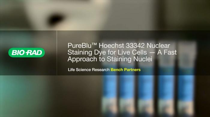 PureBlu™ Hoechst 33342 Nuclear Staining Dye for Live Cells - A Fast Approach to Staining Nuclei